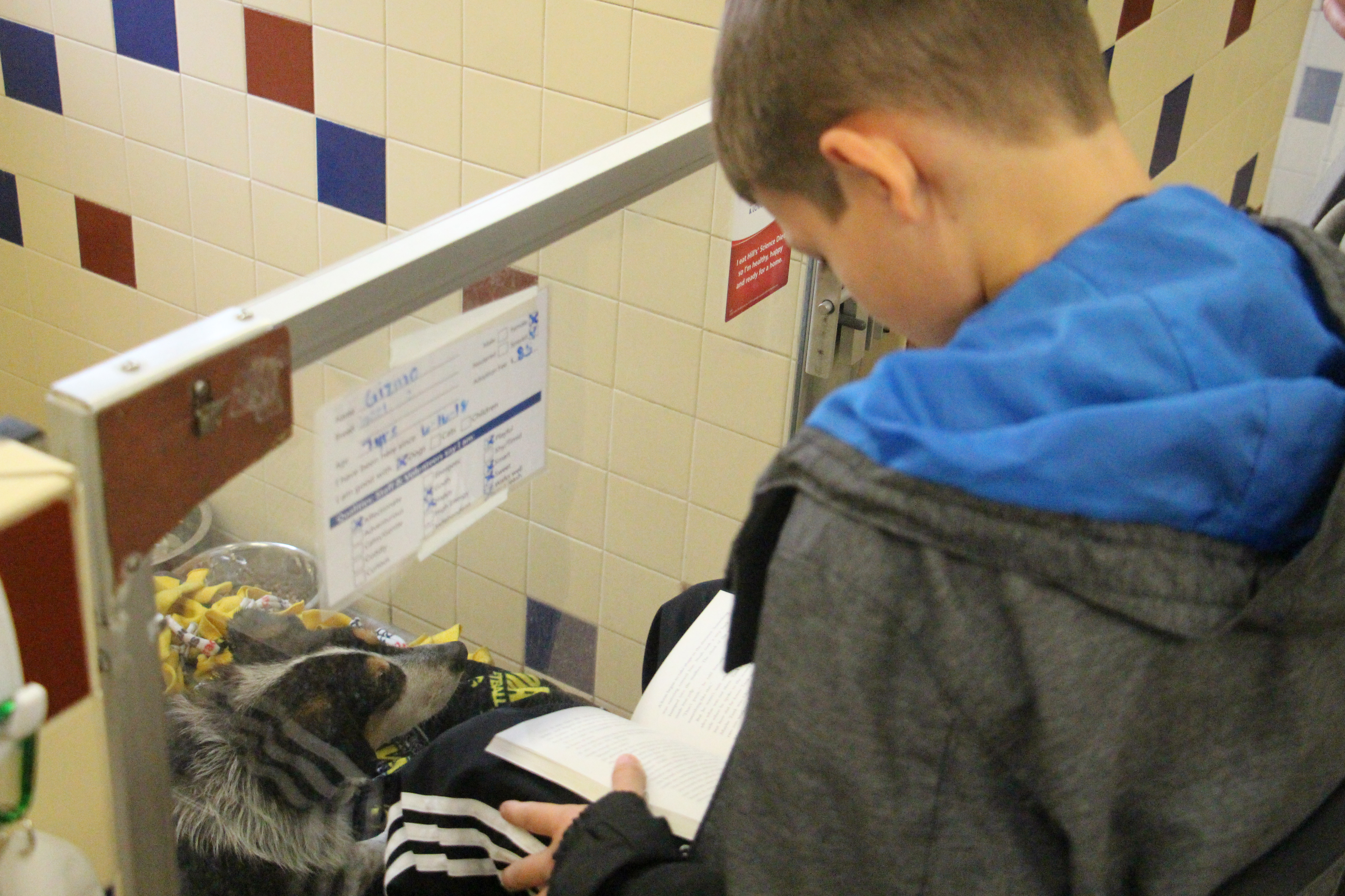 These Barking Book Buddies read to their new canine friends on Oct. 7 at the Cedar Bend Humane Society.